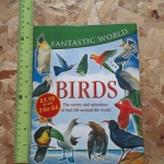 Fantastic World: BIRDS