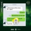 นิกาโอะ ไวทอลลิตี้ Nigao Vitality แชมพู+ครีมนวด thumbnail 33