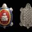 เหรียญพญาเต่าเรือน เนื้อเงินลงยา รุ่นบูรณะพระราชวังสนามจันทร์ หลวงปู่หลิว วัดไร่แตงทอง ปี2538 thumbnail 3