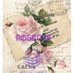 ROSE018 กระดาษแนพกิ้น 21x30ซม. ลายกุหลาบ