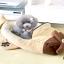 ที่นอนลูกสุนัข ที่นอนลูกหมา เครื่องบิน thumbnail 1