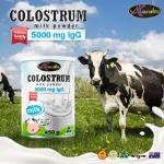นมชง Auswelllife Colostrum Milk Powder Premium Quality 50000 mg lgG น้ำนมเหลืองแบบชงสูตรเข้มข้นจากออสเตรเลีย 450gm
