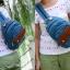 กระเป๋าเป้แบบน่ารัก สีสันสดใส จะไว้สะพายหลังหรือแบบคาด thumbnail 5