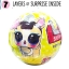 LO039 (งานเทียบ) L.O. L.SURPRISE Pets r (ตุ๊กตาเซอร์ไพร์ส 7 ชั้น) thumbnail 1