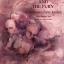 ความเดือดดาลในกระแสเสียง The Sound and the Fury / William Faulkner / สุนันทา วรรณสินธ์ เบล