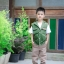 เซทเสื้อกั๊กสีเขียว เสื้อยืดขาว กางเกงขายาวสีกากี thumbnail 2
