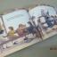 Franklin Watts WonderWise Informative Book : When I Was Young หนังสือชุดมหัศจรรย์ความรู้ thumbnail 8