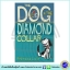 First Funny Stories : Rebecca Lisle 3 Books Collection : The Dog in the Diamond Collar, The Gnome with the Knobbly Knees, The Boy in the Big Black Box thumbnail 4