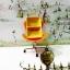 ถ้วย2ช่อง เหลือง (สีพิเศษ) thumbnail 1