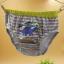 กางเกงในเด็กชาย Boy's Kids ลายไดโนเสาร์ อายุ 2-3 ปี คละลาย thumbnail 6