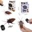 แมลงสาบบังคับ แมลงสาบบังคับวิทยุ thumbnail 1