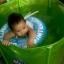 ห่วงยางว่ายน้ำเด็กเล็ก ช่วยพยุงอกและหลัง Swim Trainer Back Rings มีฟ้า ชมพู thumbnail 14