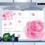 """สติ๊กเกอร์ติดครัวกันน้ำมันกระเด็น """"Rose of Love"""" ขนาด 60 cm x 90 cm thumbnail 2"""