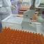 เซรั่ม วิตามินซีเข้มข้น เร่งผิวขาว Serum VitC โปร 1 แถม 1 ซื้อ 2 แถม 3 thumbnail 5