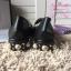 รองเท้า Gucci สีดำ งานHiend 1:1 thumbnail 5