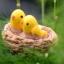 นกน้อยในรังสองตัว (Orile bird) thumbnail 1