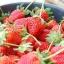 สตรอว์เบอร์รี (Strawberry) โลละ 0 บาท thumbnail 1