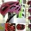 หมวกจักรยาน CIGNA ทรงหยดน้ำ มีแว่นในตัว (แอดไลน์ @pinpinbike ใส่ @ ข้างหน้าด้วยนะคะ) thumbnail 13