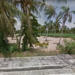ขายที่ดินเปล่าถมแล้ว หนองปรือ บางละมุง ชลบุรี 2-0-07 ไร่