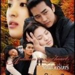 Autumn in My Heart รักนี้ชั่วนิรันดร์ 9 แผ่น DVD พากย์ไทย