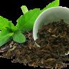 กลิ่นชาเขียว ( Green Tea )