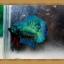 ปลากัดครีบสั้น-Super Green Halfmoon Plakats thumbnail 5