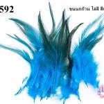 ขนนกก้าน ไล่สี สีฟ้า (20ชิ้น)