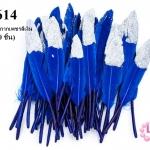 ขนนกก้าน สีน้ำเงิน ปลายกากเพชรสีเงิน (1ห่อ/50 ชิ้น)